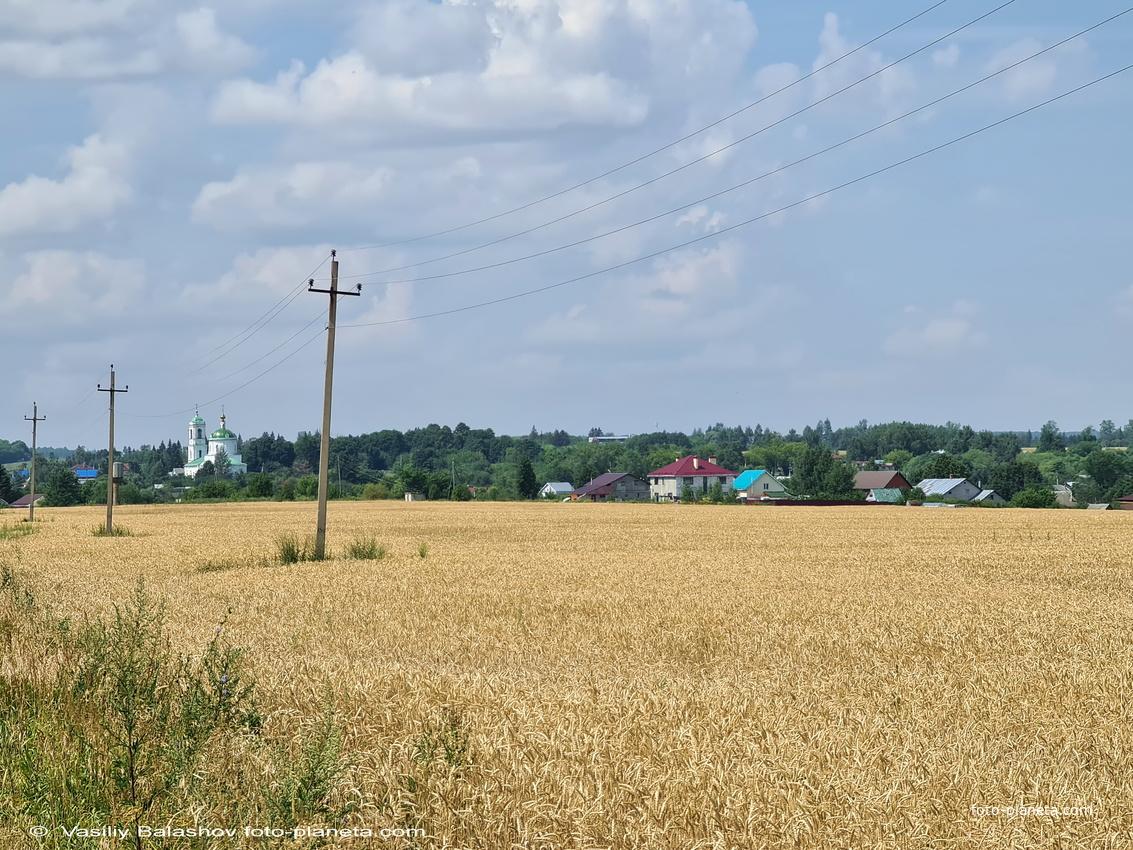 Панорама с. Борисовкое с юго -востока