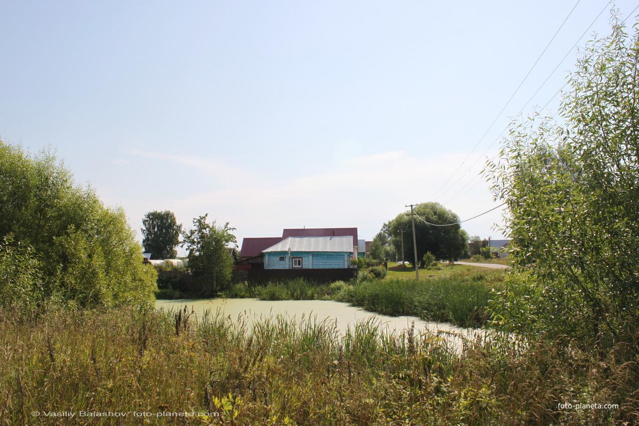 Пруд в Ляховицах