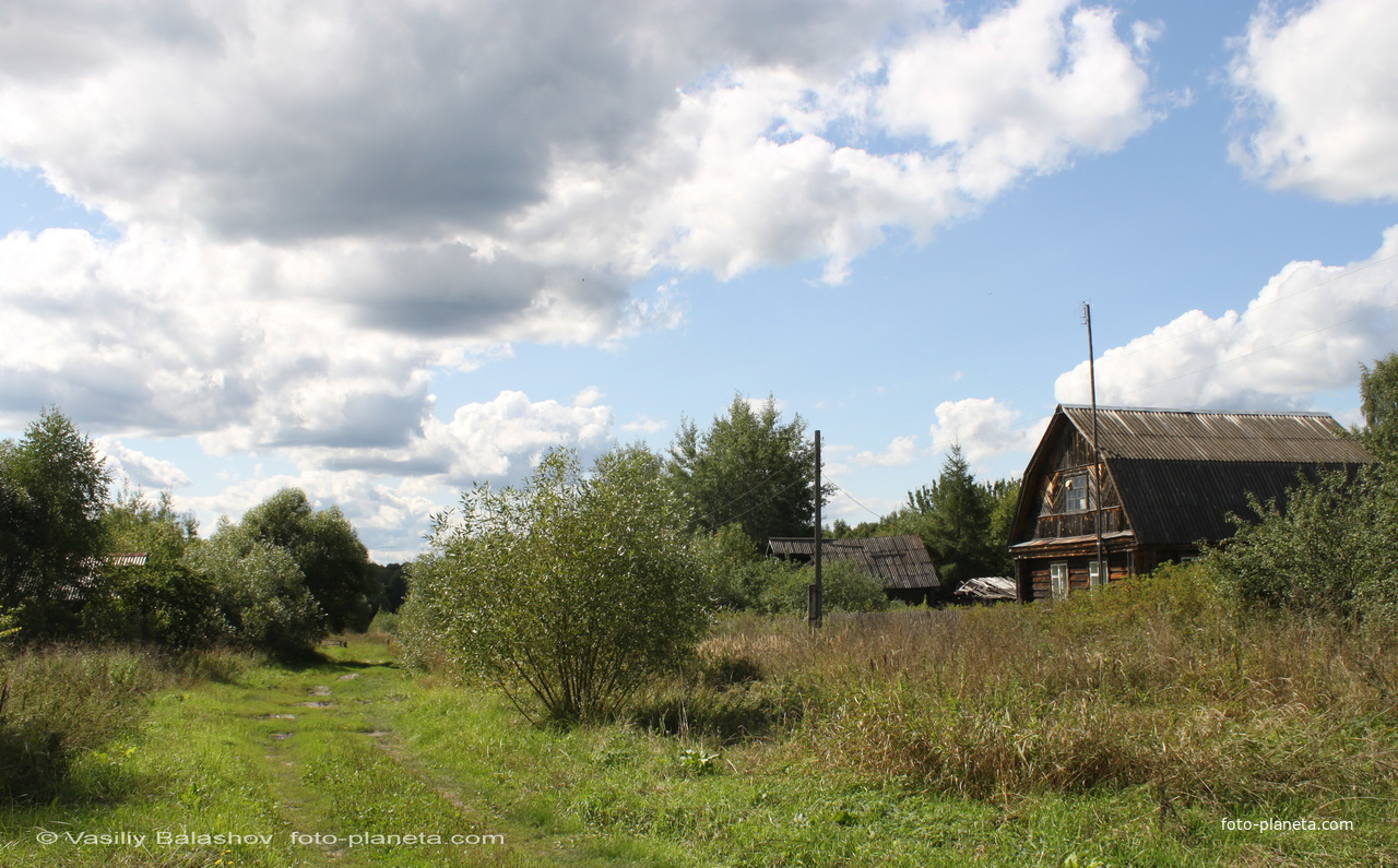 д. Пушнино,  дома в конце деревни