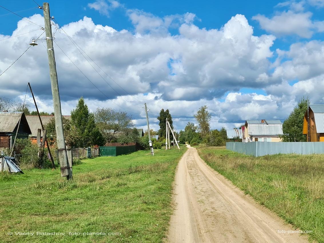 с. Барсково,  ул Советская, южная часть