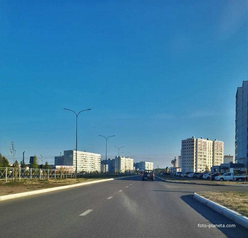 улица Хирурга Нечаева