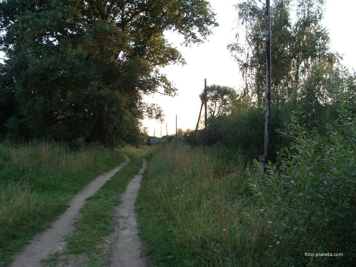 улица в Еськовке