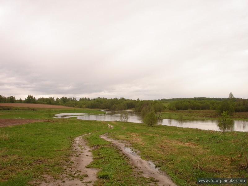 Разлив Жидоховки близ Попово