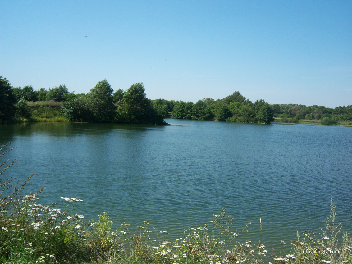 Озеро (Карьер) в Солнцево Курской области