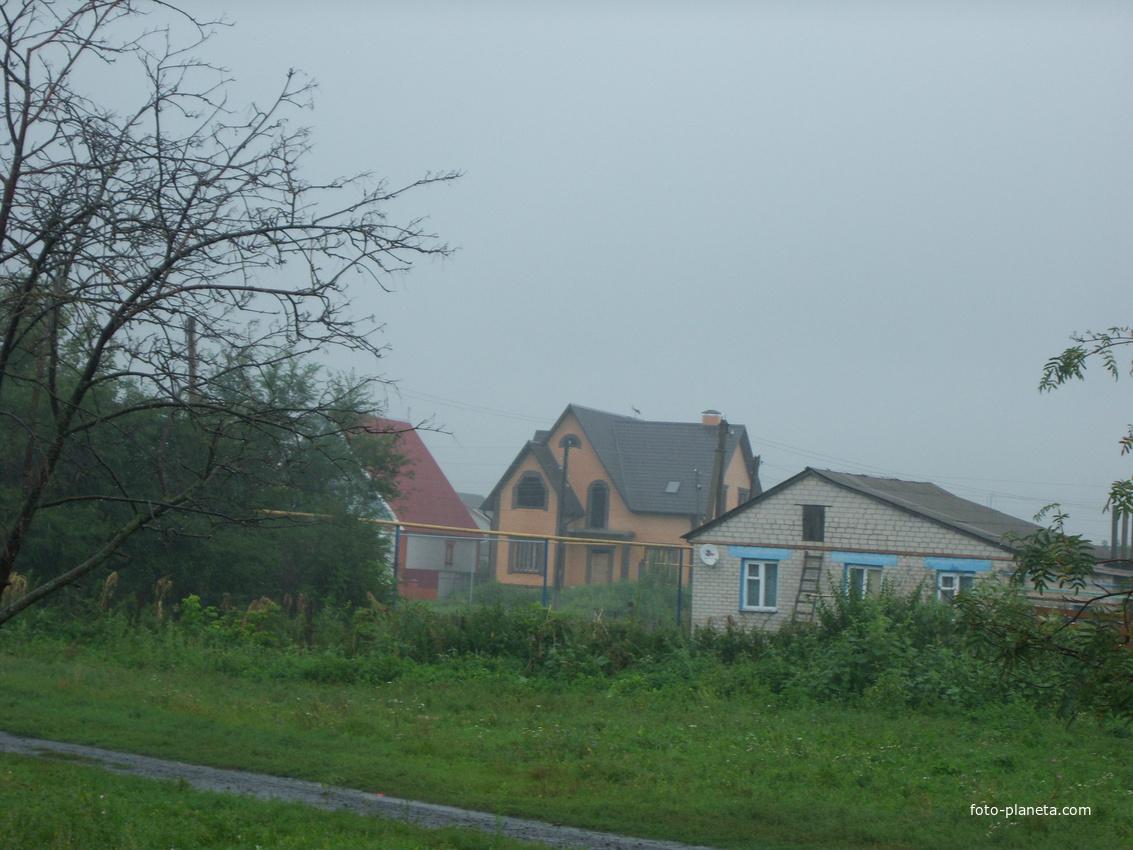 Дождь идет, а Аист на крыше