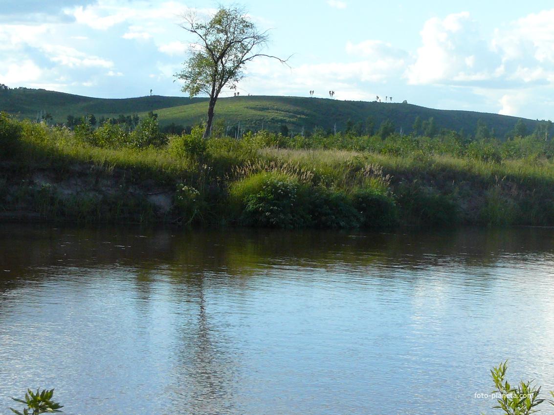хрен, фотографии река завитая амурской области татарская кухня