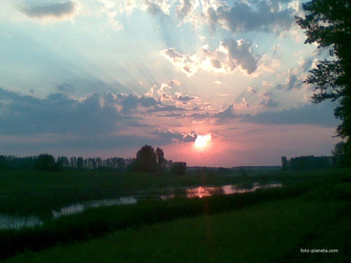 Восход на пруду