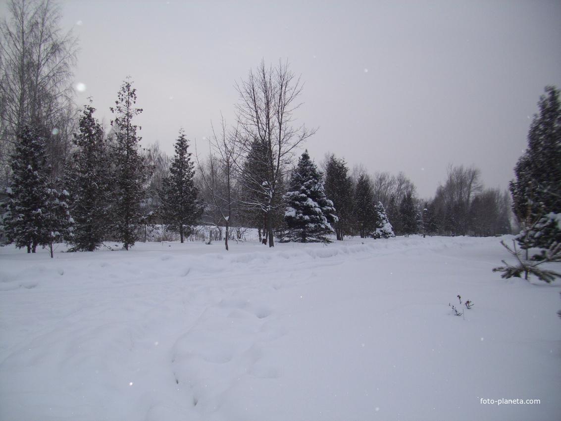 Зима в Струбково.