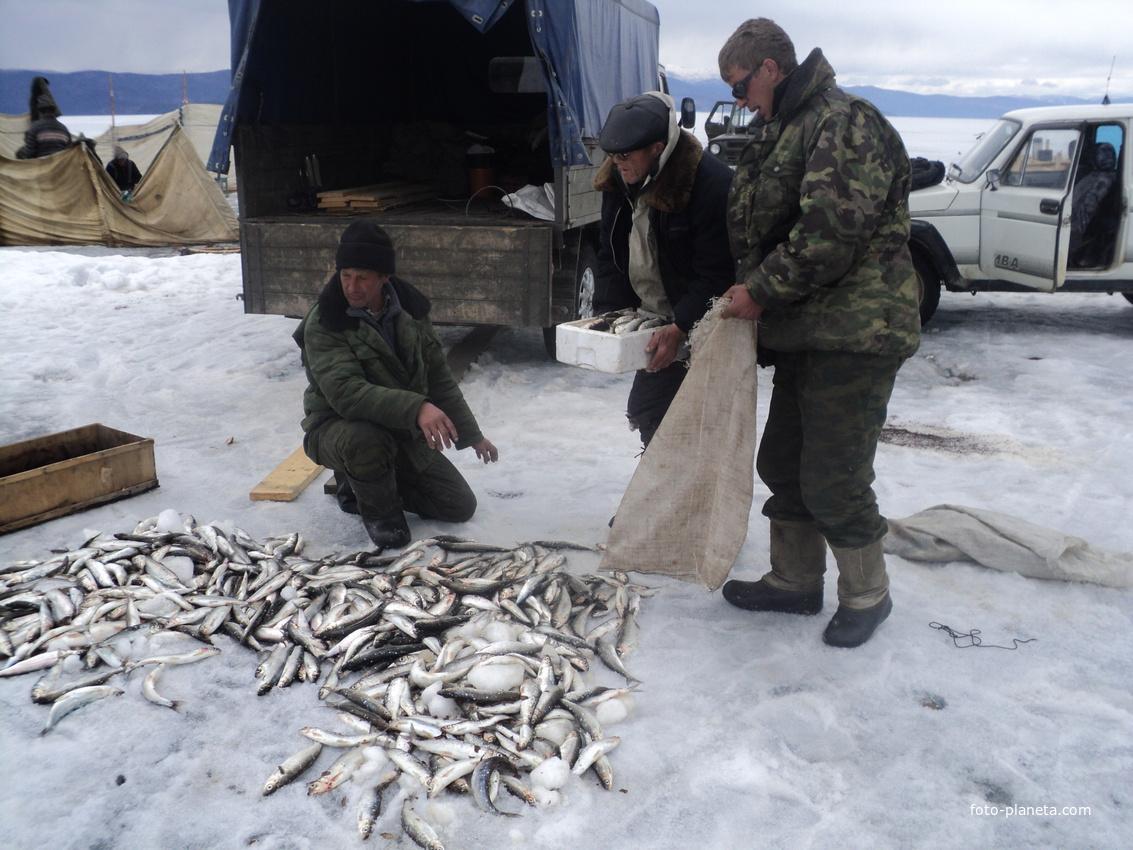 фото рыбалка в баргузине тем, несмотря аналогичные