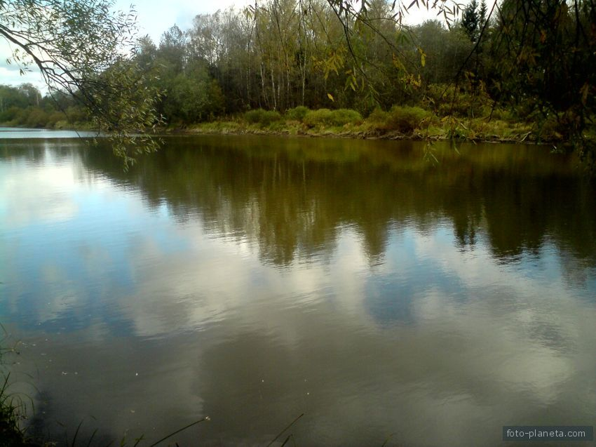 каменки волоколамский район рыбалка