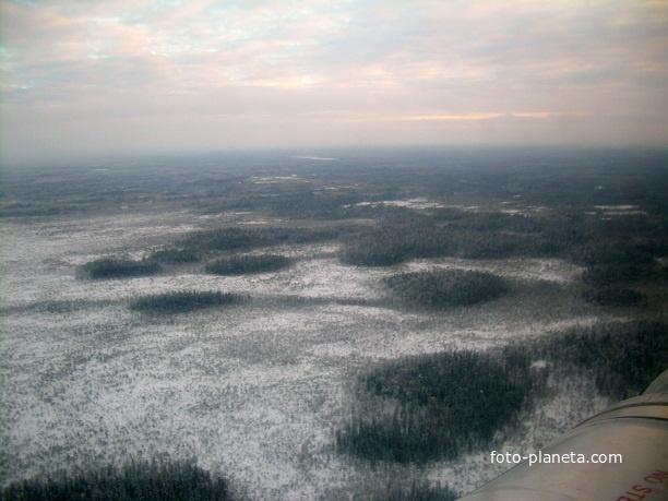Западная Сибирь. Вид с вертолёта