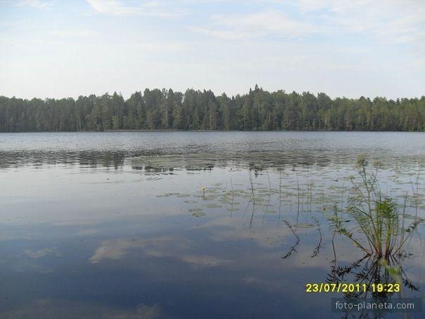 рыбалка в любытино новгородская область