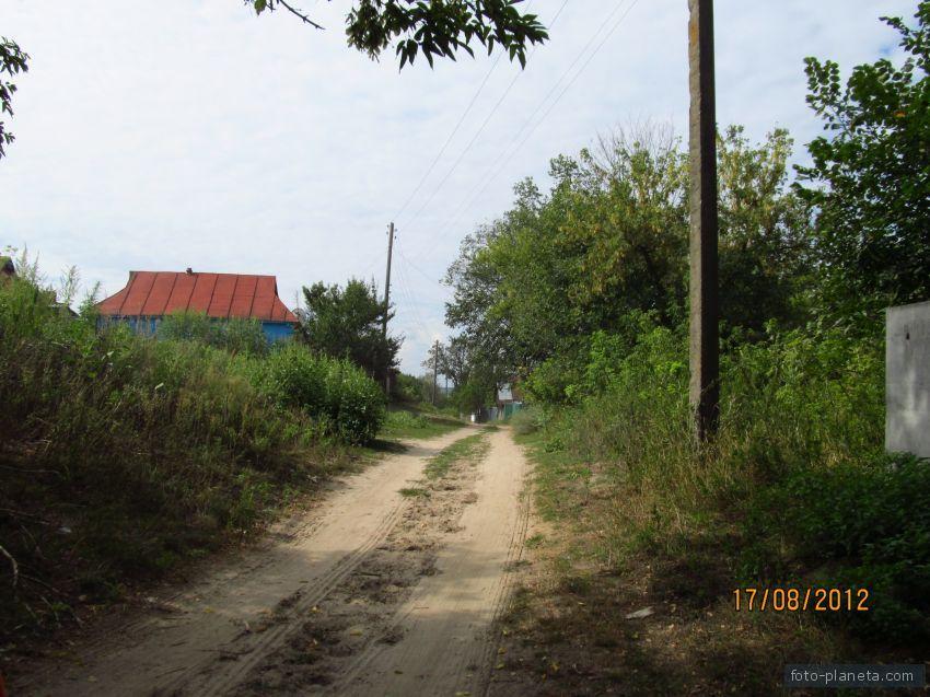 Село Межирич