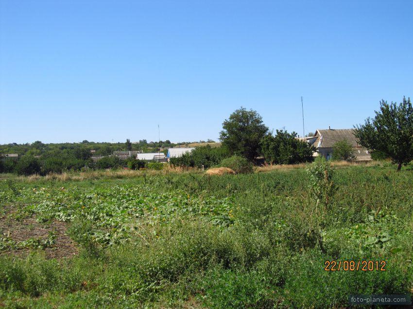 Огороды у дороги