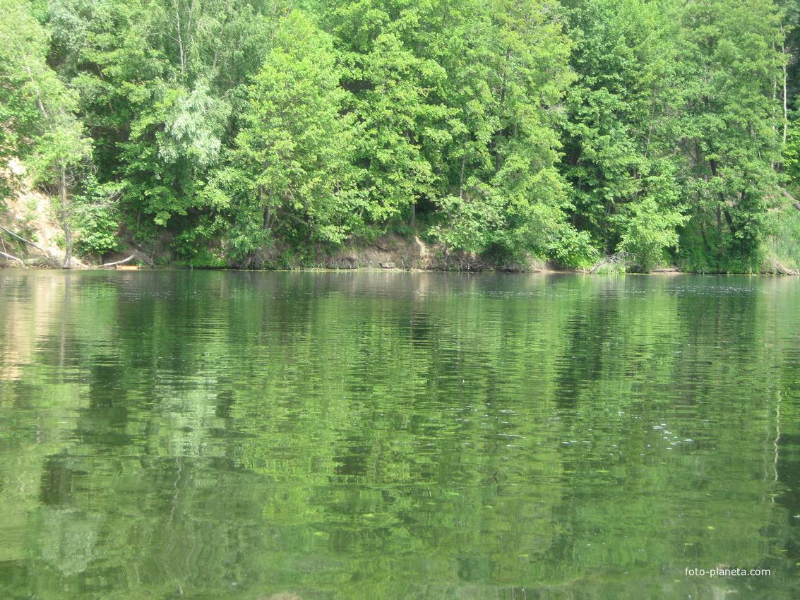 река воронеж рыбалка в чертовицке