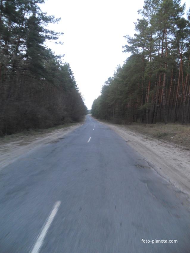 дорога и Ташки
