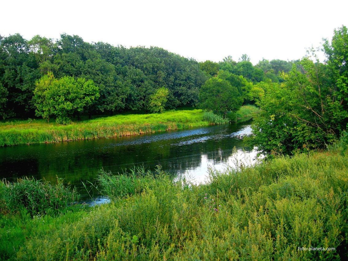 река кривой торец рыбалка