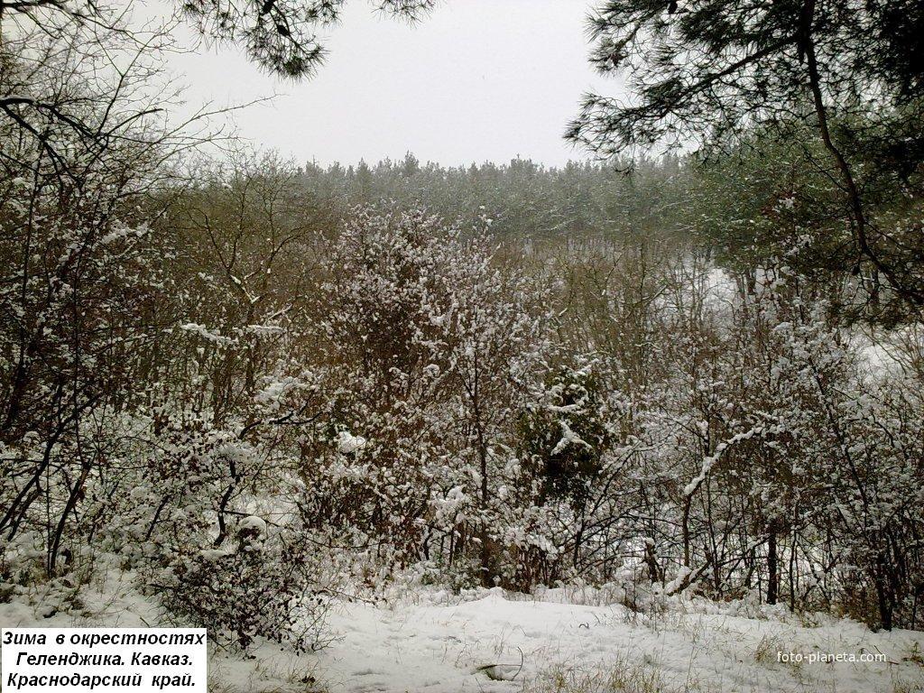 В окрестностях Геленджика зимой. Краснодарский Край.