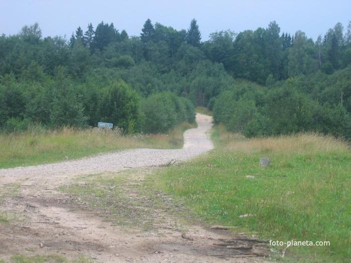 Дорога в Высочерт.Видна горка,поросшая елями.Раньше там была Высочертская школа.
