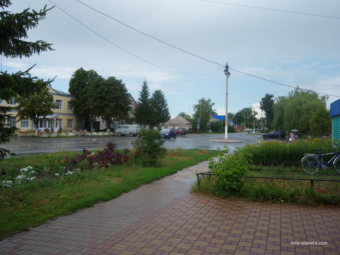 Центральная ул. Ленина п.Солнцево Курской обл. Иль 2012 г.