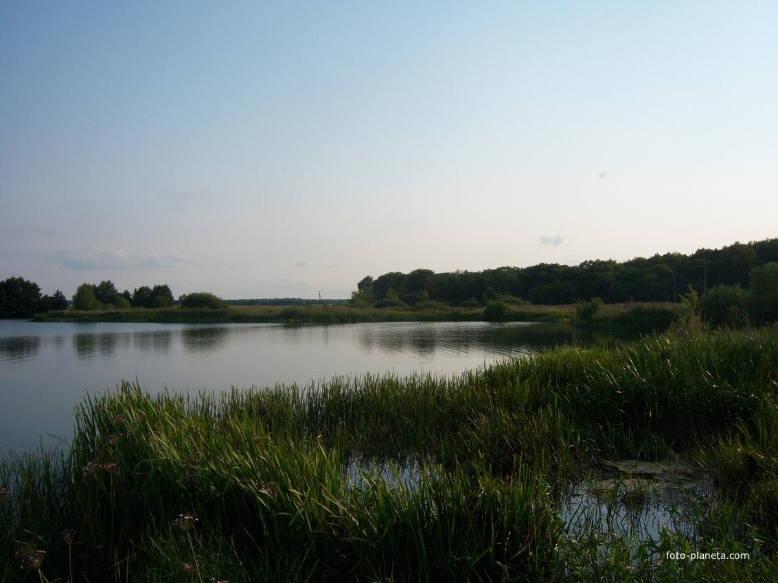 рыбалка в беловском районе курской области