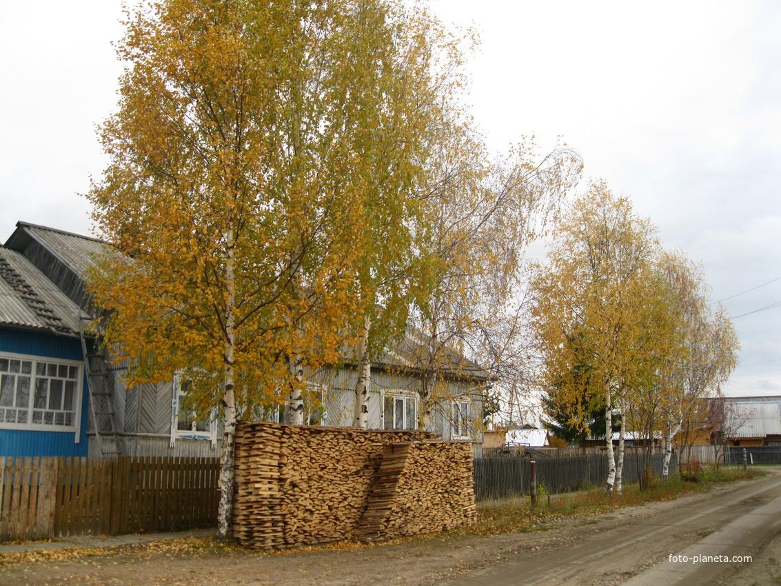 Луза, ул Кирова