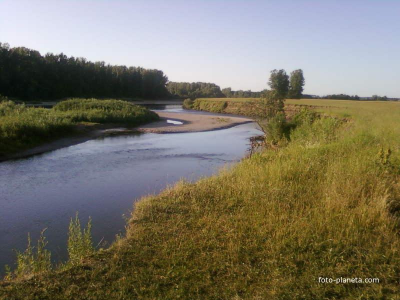 прогноз клева рыбы в свердловской области красноуфимск
