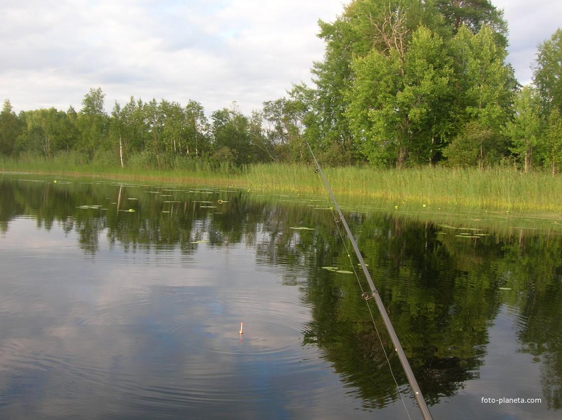 рыбалка на упе в берниках тульской области