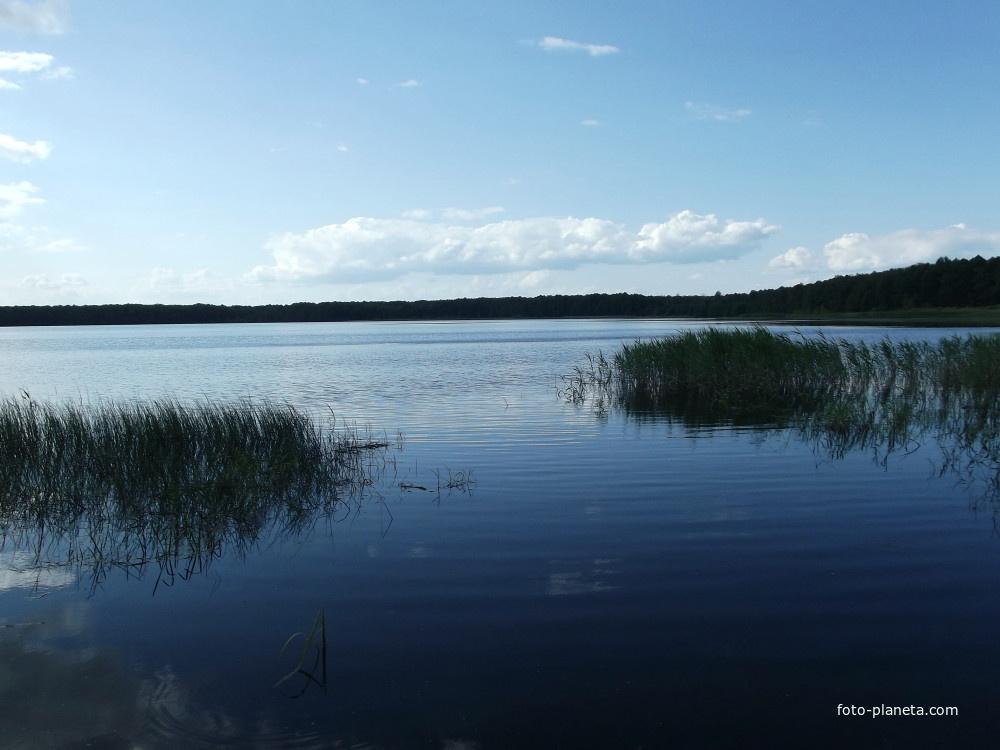 рыбалка на светлом озере в шатуре
