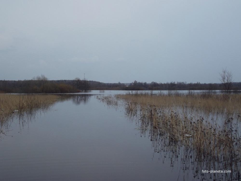 Разлилась река Нерская