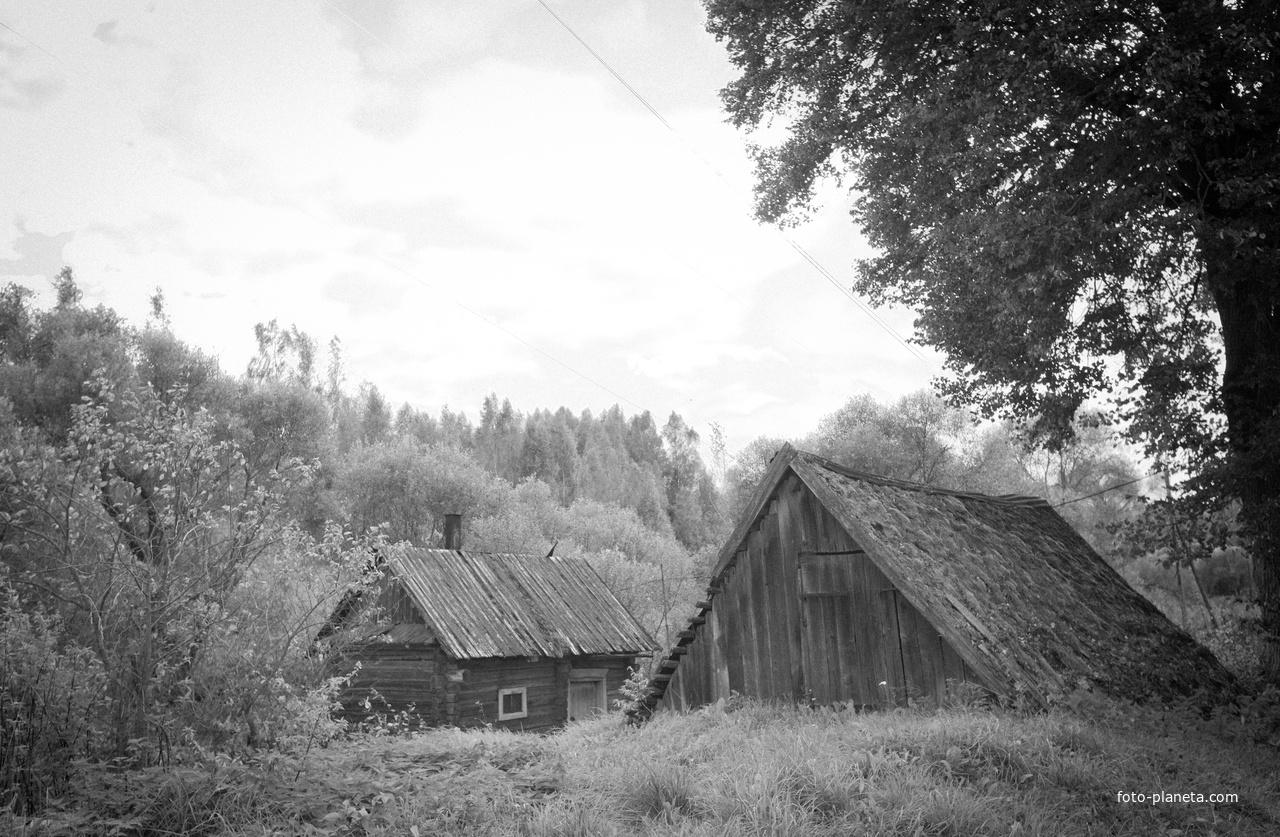 Деревня Верба 2012, проживает всего 4 двора