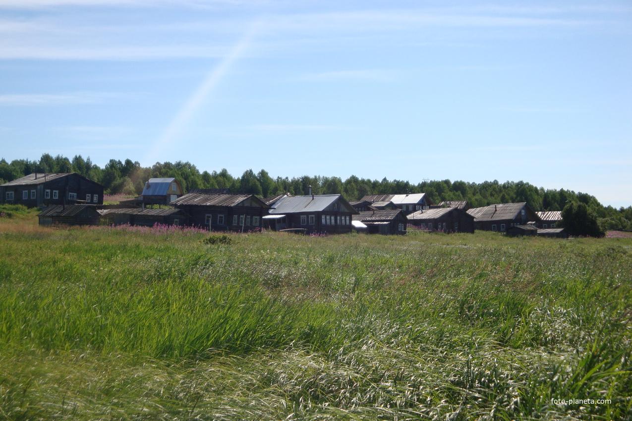 деревня Кривушево