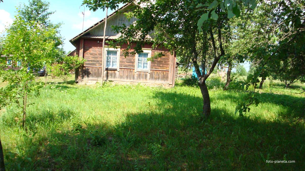 Фотография 35376279 в районе литвиново, россия
