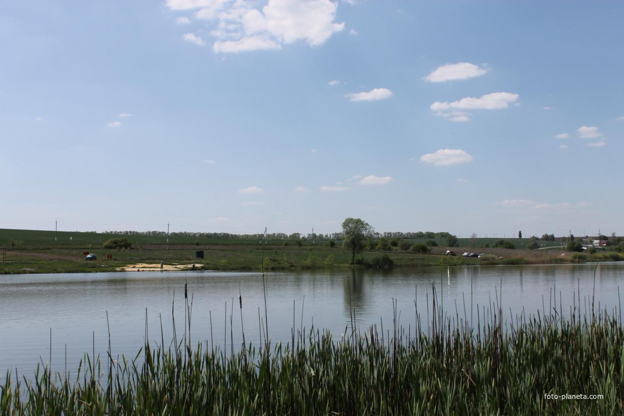 Пруд на окраине села Церковный