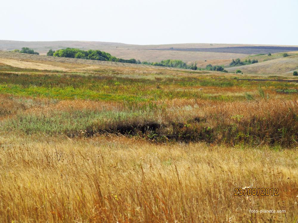 вскоре удача картинки тарасовского района ростовской области правик голый лежит