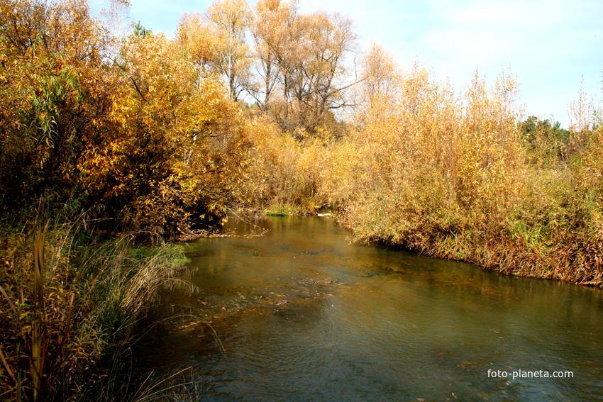 Сосновка-речка Большой Барлак