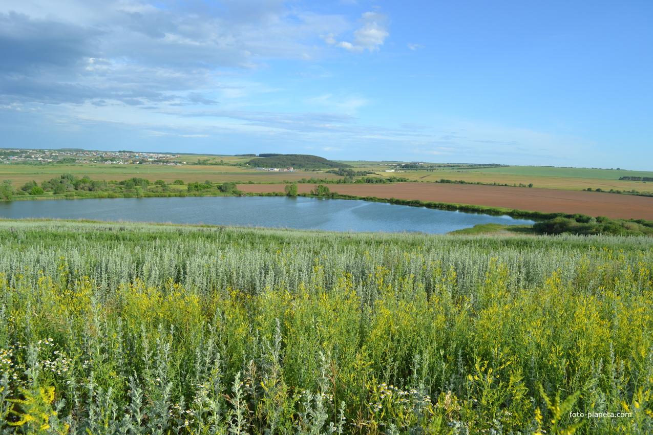 Азелинский пруд
