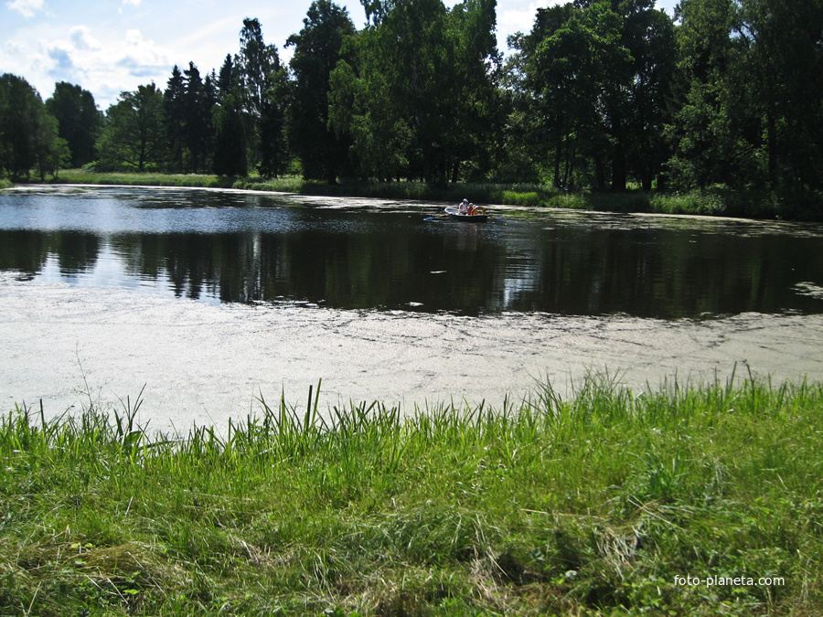 павловский парк рыбалка