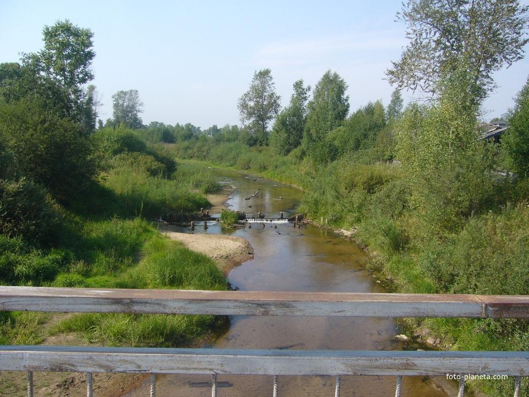Река Вол | им. М.И. Калинина (Ветлужский район)