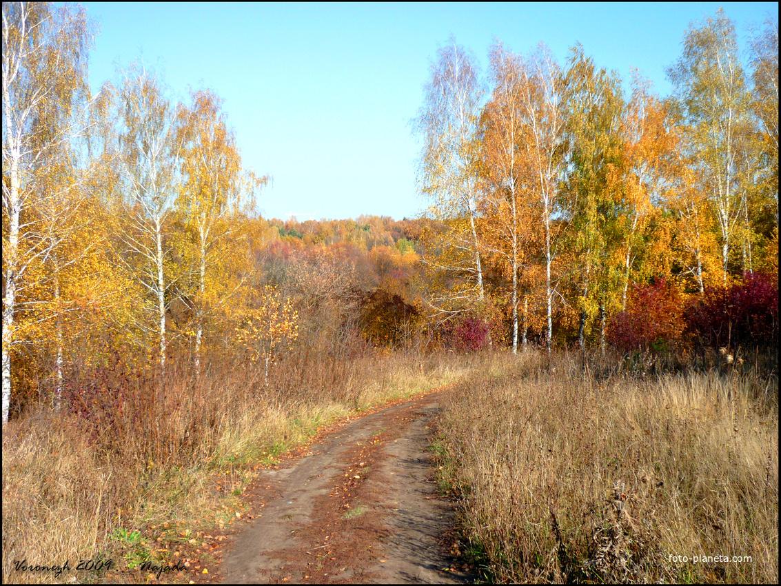 priroda36.ru - Природа Воронежской области | Природа ...