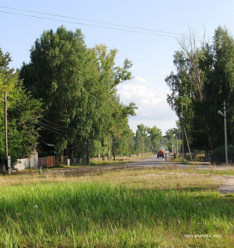 Улицы посёлка | им. М.И. Калинина (Ветлужский район)