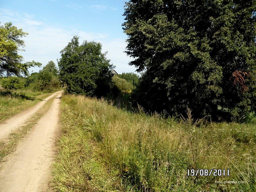 Дорога в деревне