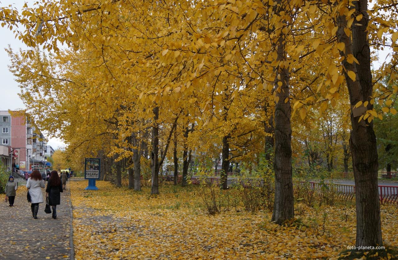 Северодвинск. Улица Ломоносова.