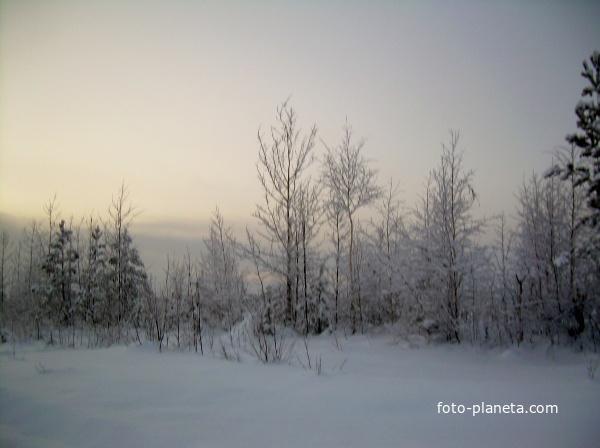 Западная Сибирь.