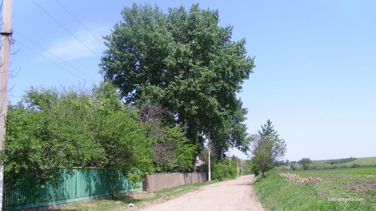 Одна з вулиць Лузанівки.