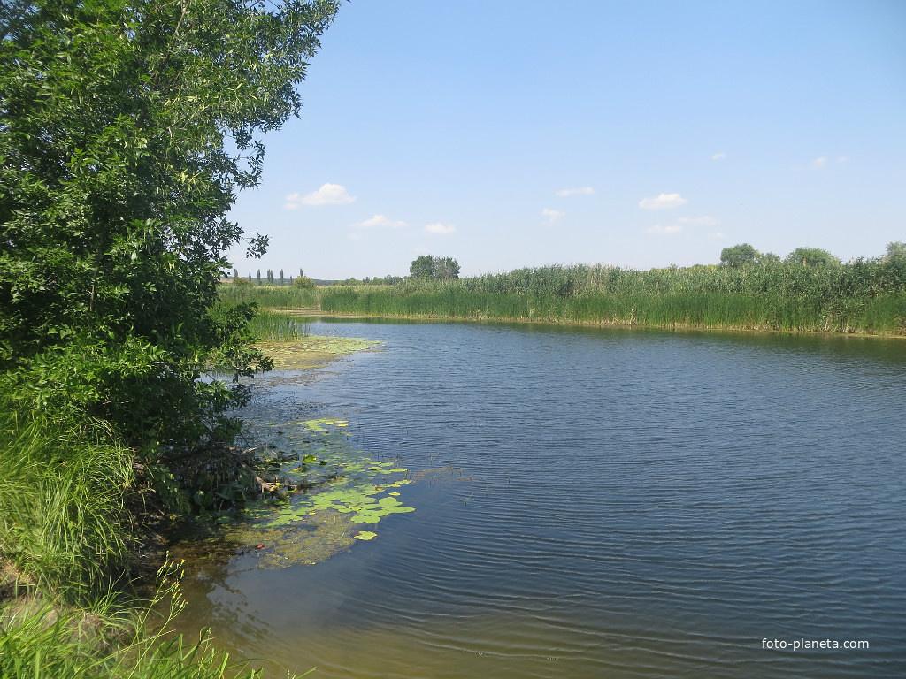 озеро большой лиман ростовская область рыбалка
