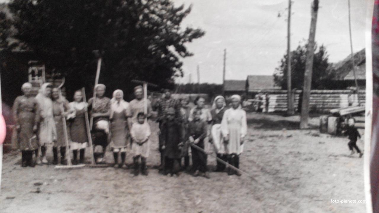 Новочистка 1950-1960 годы