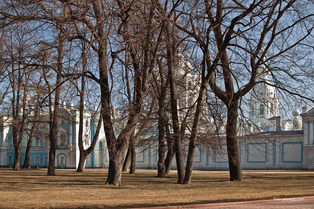 Парк возле Смольного собора