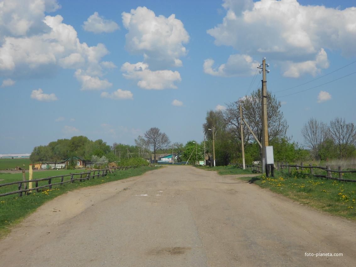 ул. Центральная