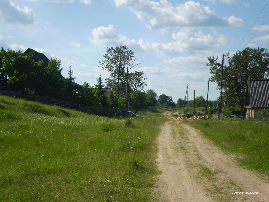 Дорога в сторону свинарника